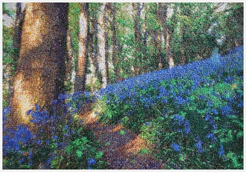 STDAVIDS.WALES:Embroidered Art - Sea of Bluebells:DK Embroidery Designs:Art