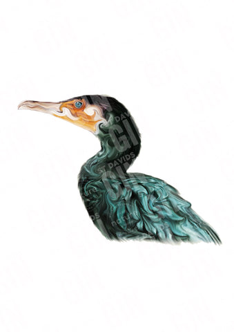 'Cormorant' Ramsey Series Mounted Print - STDAVIDS.WALES