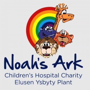 STDAVIDS.WALES:Noah's Ark Children's Hospital:NOAHS ARK CHILDREN'S HOSPITAL:Welsh Charity