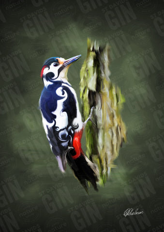 STDAVIDS.WALES:'The Lesser Spotted Woodpecker' Mounted Print:St Davids Gin & Kitchen:Art