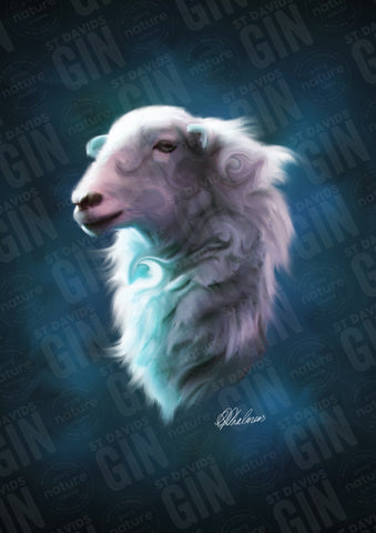 'Twilight Ewe' Ramsey Series Mounted Print