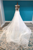 Atelier Pronovias Style HADDA - The Persnickety Bride