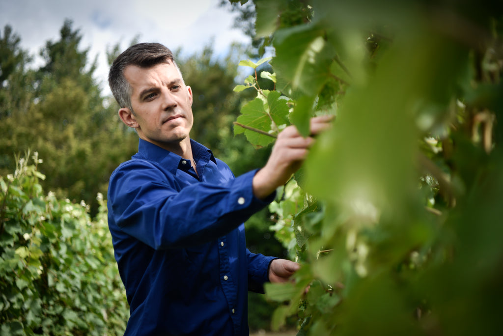 Wine Talks British Business with Brad Greatrix from Nyetimber
