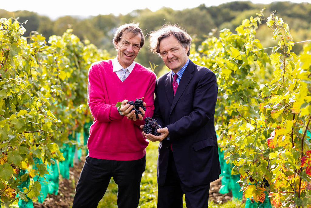 Taittinger UK  Domaine Evremond  Vineyard interview with  Pierre-Emmanuel Taittinger