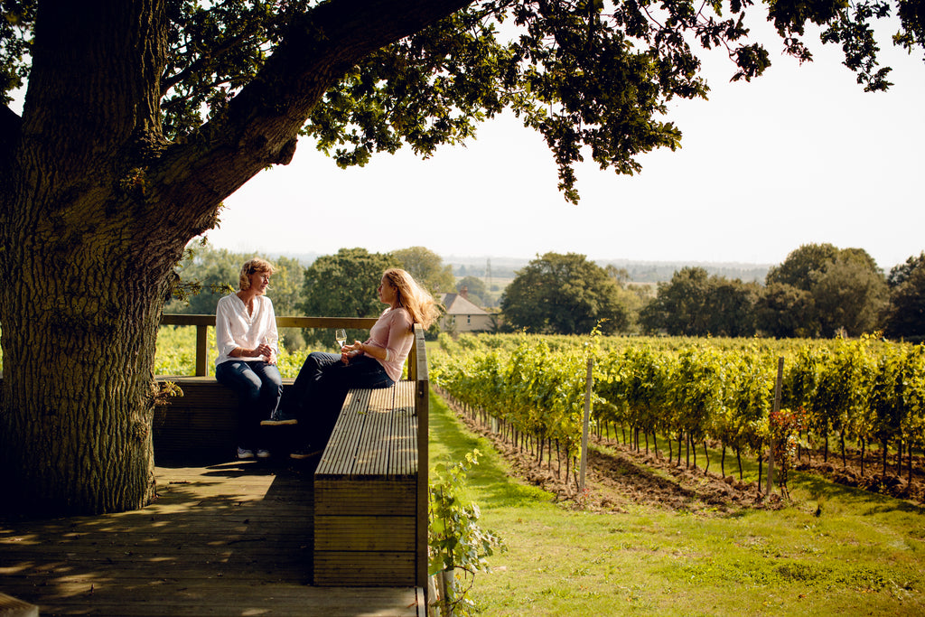 Gusbourne Vineyard interview by The English Wine Collection