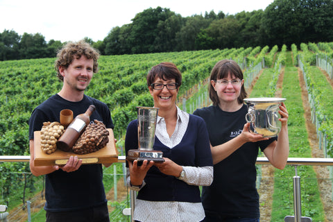 Bolney English Wine Collection   The English Wine Collection