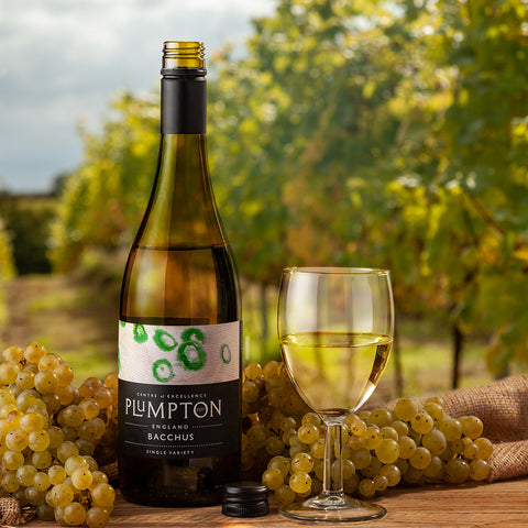 Plumpton Wine college English Vineyard Interview By The English Wine Collection
