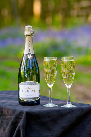 The ENglish Wine Collection Hindleap bluebell vineyard