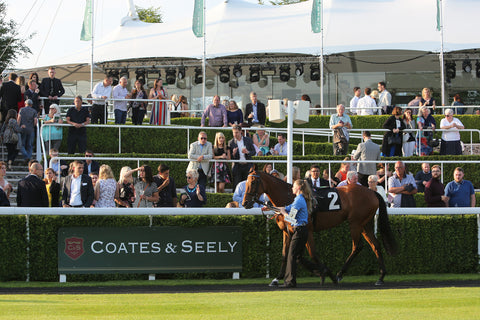 The Jockey Club Coates and Seely english wine the english wine collection