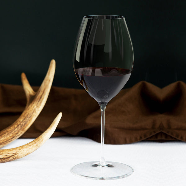 Syrah, Shiraz | Red Wine Glass Set of 2 Riedel Performance