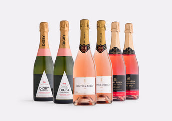 Classic Sparkling Rosé Case | Curated Case Collection