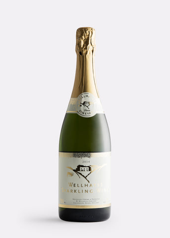 Wellhayes sparkling white wine The English Wine Collection