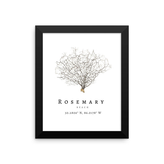 Framed Rosemary Beach Sea Fan Print