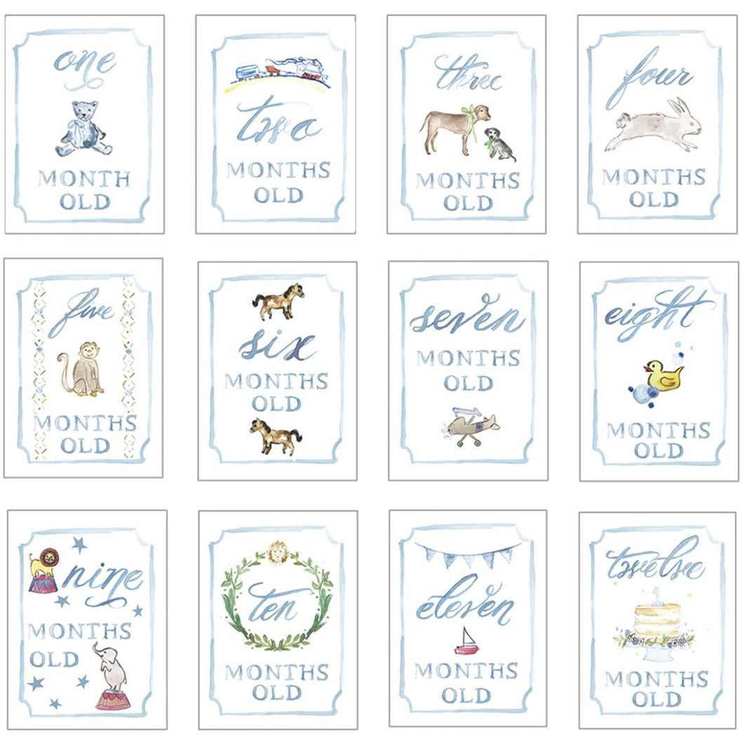 BLUE MONTH BY MONTH BABY CARDS