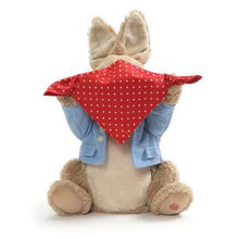 PETER RABBIT PEEK A BOO