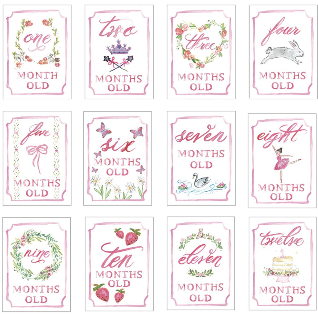 PINK MONTH BY MONTH BABY CARDS