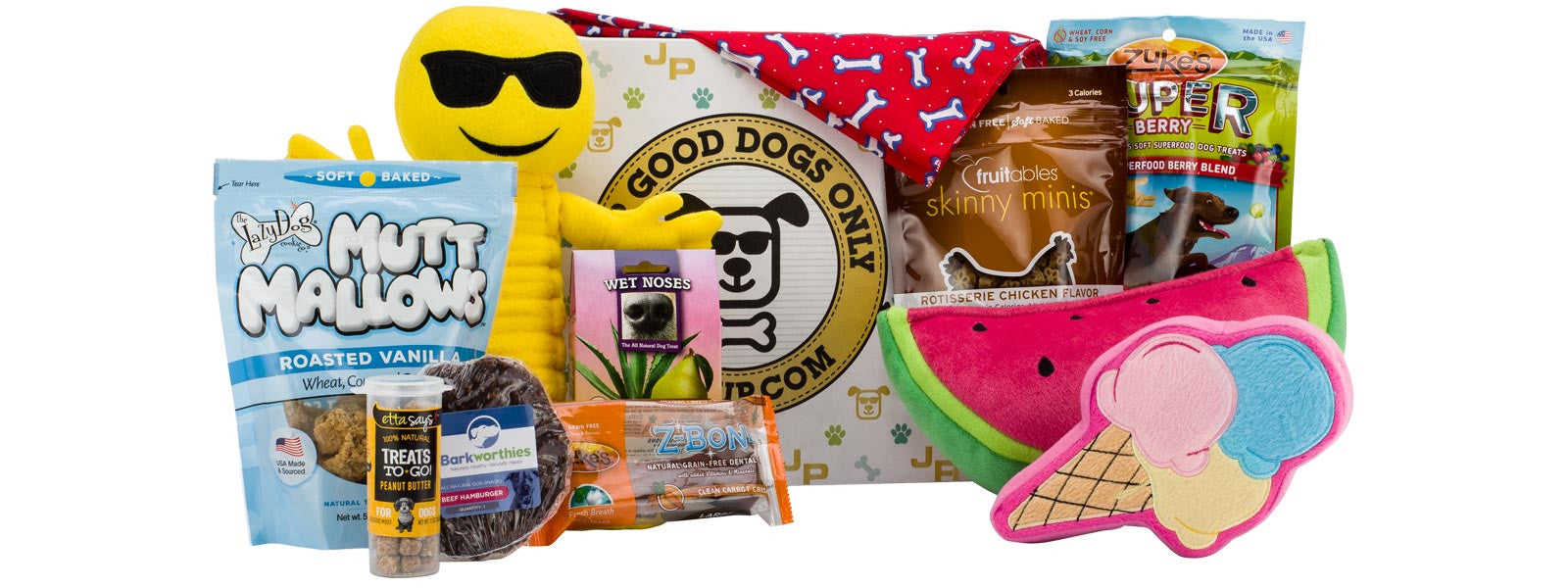 Joe Pup Monthly Subscription Box for Dogs