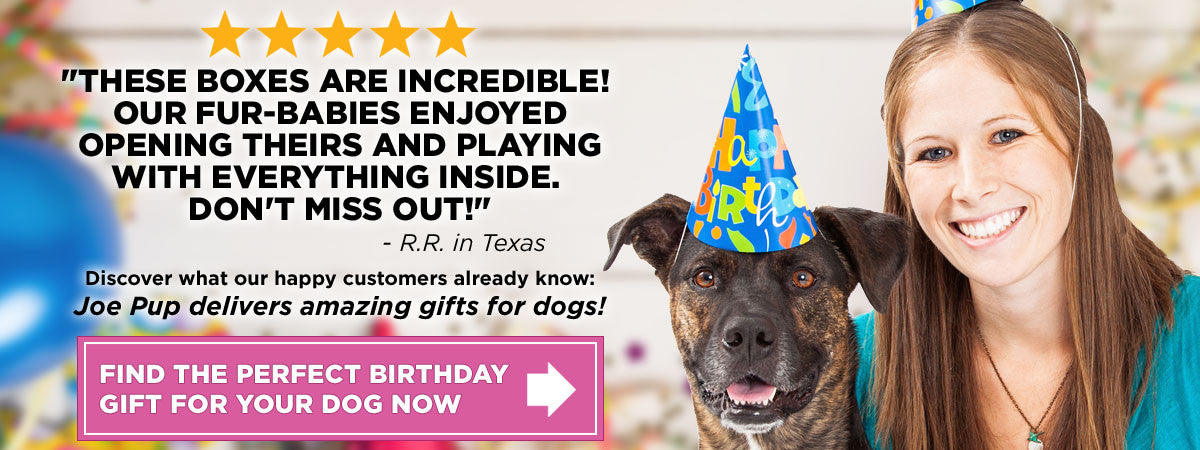 Dog Birthday Gifts - Premium Treats and Unique Toys