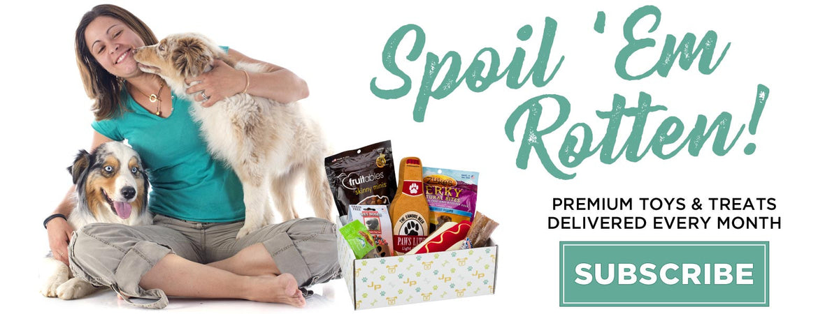Discover a bigger better monthly subscription box for your dog!