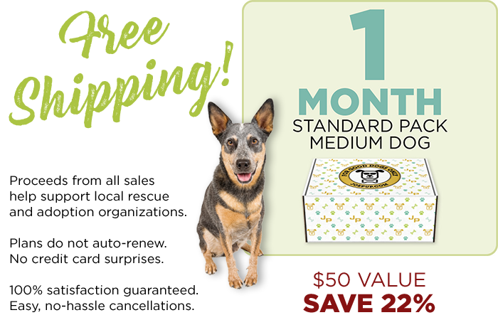 1 Month Only - Standard Pack - Medium Dog