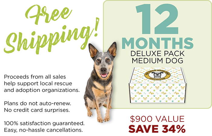 12 Month Plan - Deluxe Pack - Medium Dog