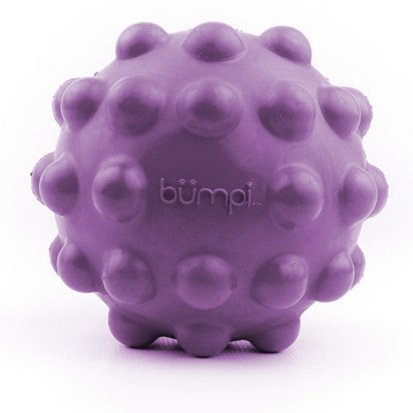 PetProjekt Bumpi Ball Dog Toy