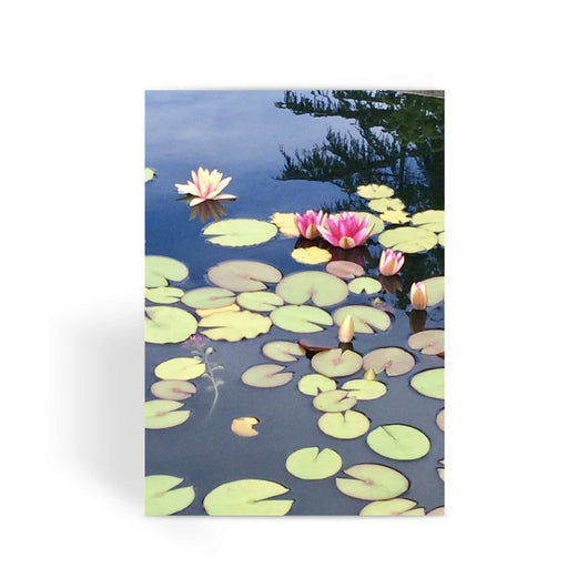 WATER LILY PHOTOGRAPH Greeting Card