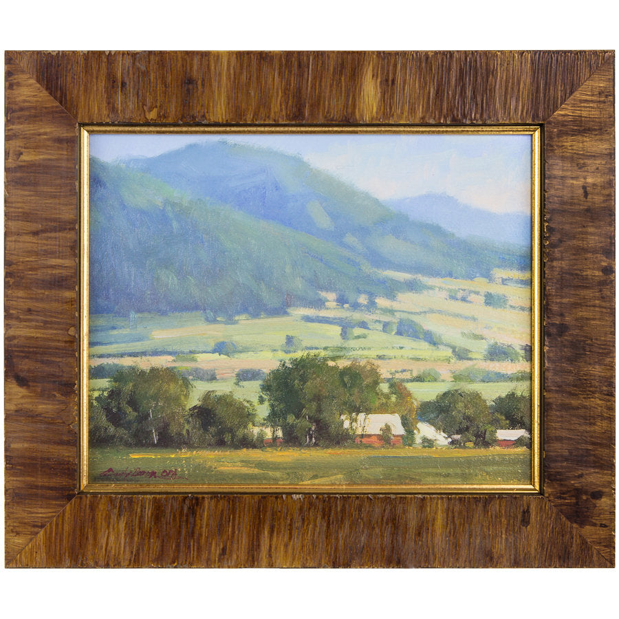 Foothills Farm by Cindy Baron, Framed