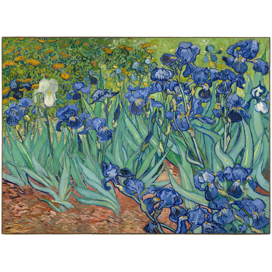 The Irises by Vincent Van Gogh