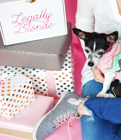 The Legally Blonde Box