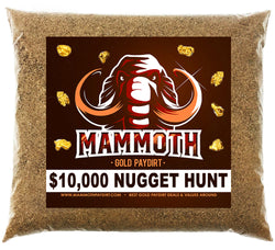Mammoth '$10,000 NUGGET HUNT' - Gold Panning Paydirt Concentrate