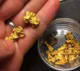 *BOGO*: MAMMOTH 'TROY OUNCE NUGGET HUNT' Gold Paydirt - Gold Paydirt Concentrate