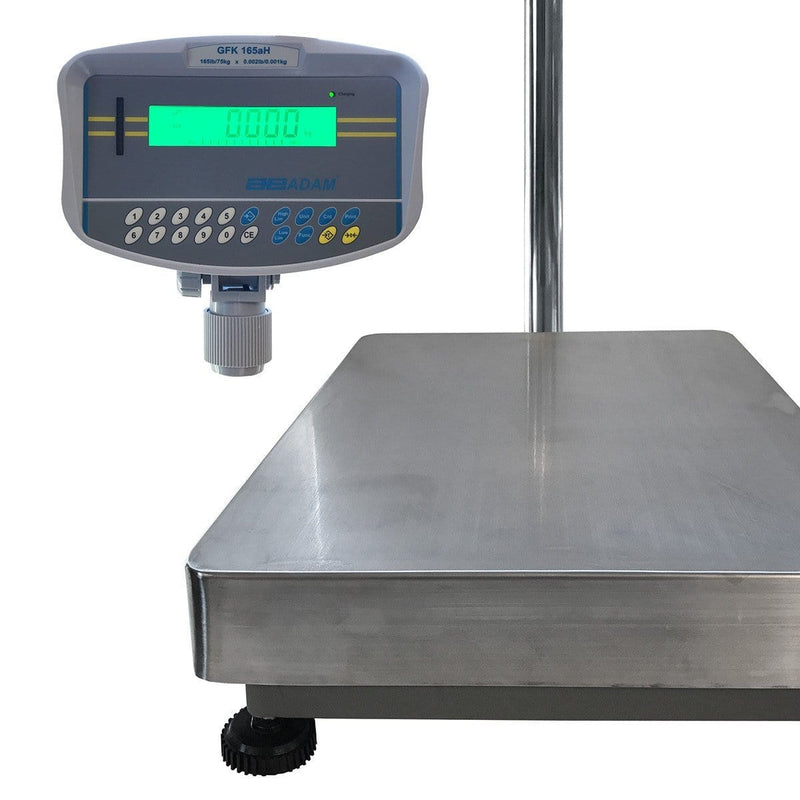DPF Floor Checkweighing Scale (FTM DS165)