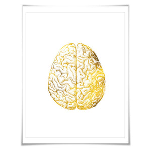 Human Brain Anatomical Gold Foil Art Print. 7 Foil Colours/3 Sizes. Medical Anatomy Doctor Science Poster.
