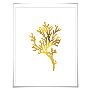 Coral 5 Gold Foil Art Print. 7 Foil Colours/3 Sizes. Sea life Poster Maritime Ocean Decor Nature Poster Beach Wall Art