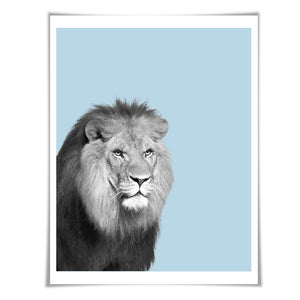 Lion Art Print. 6 Sizes/60 Colours. Lion Photo. Nursery Wall Art. Wildlife Poster. Safari Animal Art