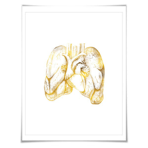 Human lungs Anatomical Gold Foil Art Print. 7 Foil Colours/3 Sizes. Medical Art Print, Science Poster.