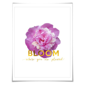 Bloom Where You Are Planted Gold Foil Art Print. 3 Sizes. Flower Poster. Floral Art. Peony. Inspirational Quote.