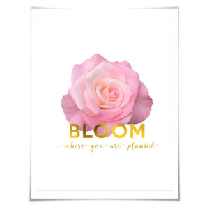 Bloom Where You Are Planted Gold Foil Art Print. 3 Sizes. Flower Poster. Floral Art. Pink Rose. Inspirational Quote.
