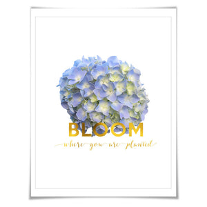 Bloom Where You Are Planted Gold Foil Art Print. 3 Sizes. Flower Poster. Floral Art. Hydrangea. Inspirational Quote.