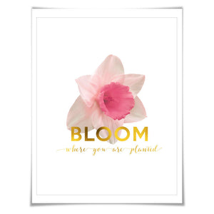 Bloom Where You Are Planted Gold Foil Art Print. 3 Sizes. Flower Poster. Floral Art. Narcissus. Inspirational Quote.