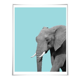 Elephant Art Print. 6 Sizes/60 Colours. Elephant Photo. Nursery Wall Art. Wildlife Poster. Animal Art