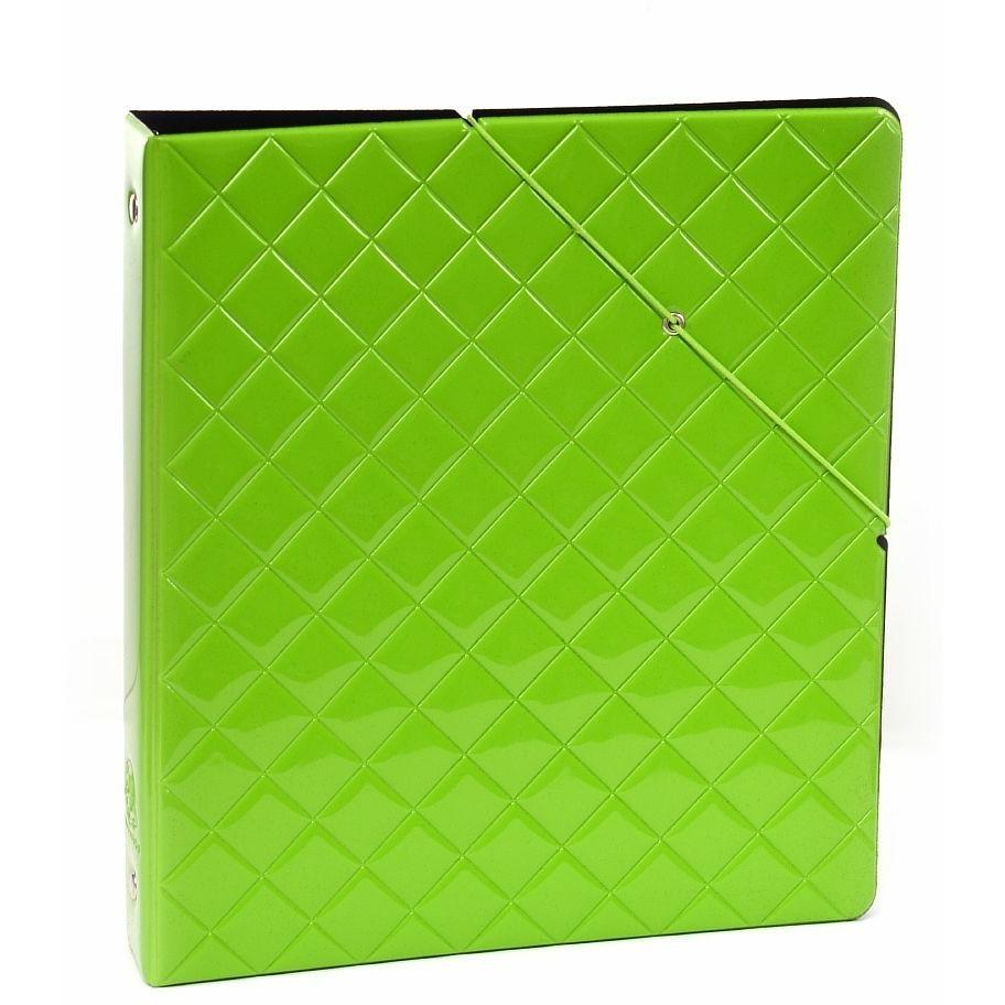 Envy Storage Binder Green