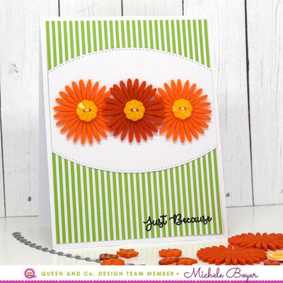 Daisy Flower Bundle