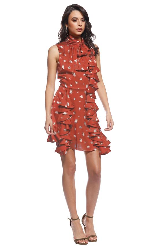 Pasduchas Dolly Dress in Rust