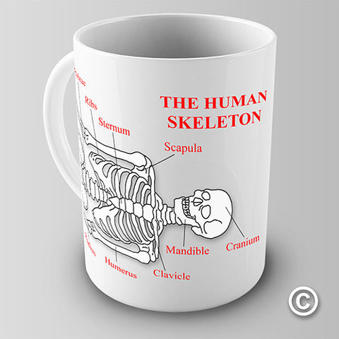 The Human Skeleton Novelty Mug