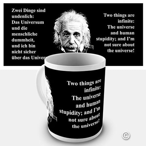 Einstein The Universe And Human Stupidity Novelty Mug