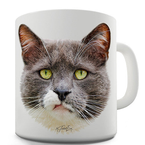 Annoyed Cat Face Novelty Mug