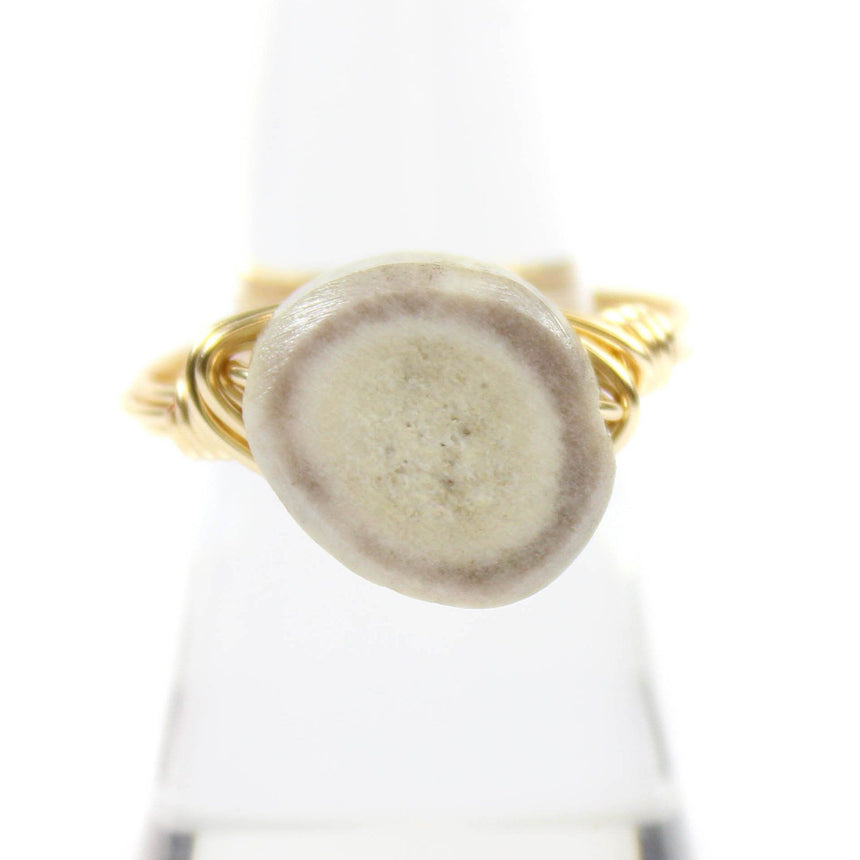 Antler Ring - Arlo and Arrows