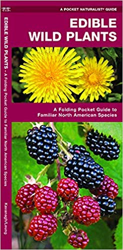 Edible Wild Plants: A Folding Pocket Guide to Familiar North American Species (Pocket Naturalist Guides)